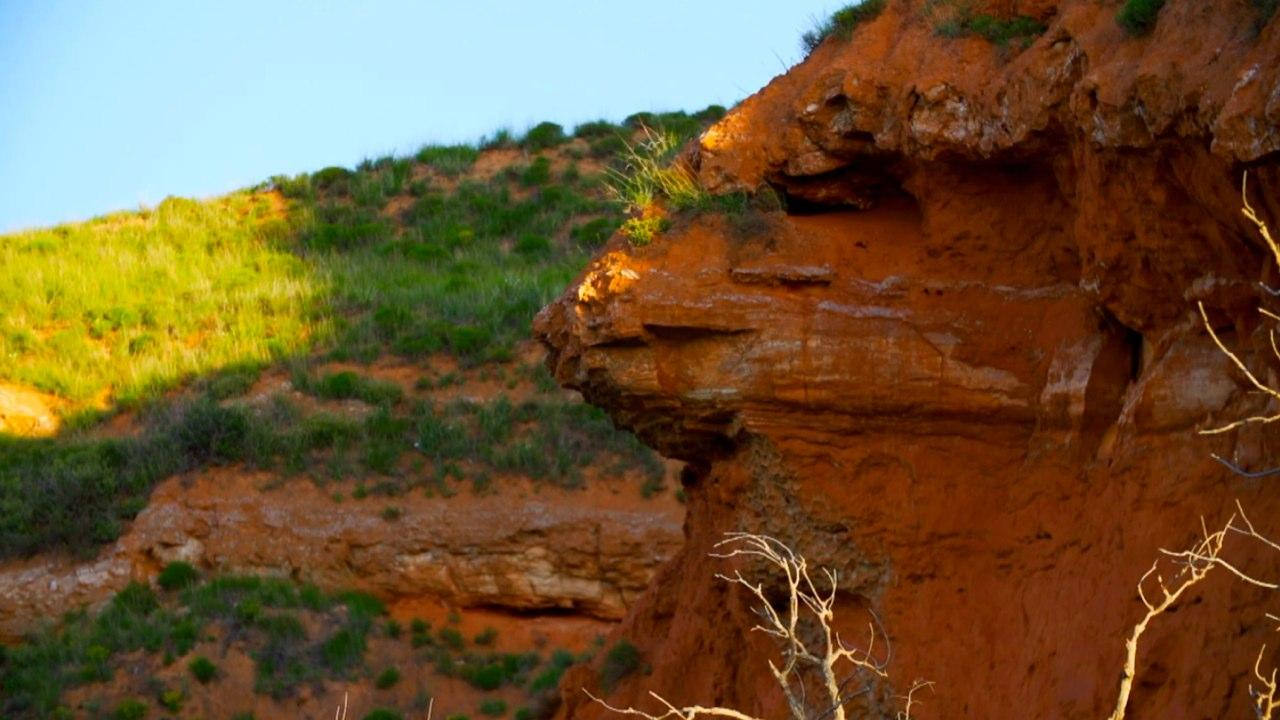 Four Canyon Preserve